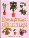 Рычкова Ю.В. - Комнатные растения в вашем доме обложка книги