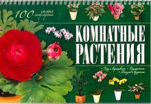 Якушева М.Н. - Комнатные растения. 100 самых популярных обложка книги