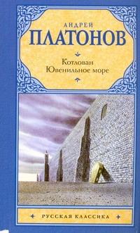 Котлован. Ювенильное море обложка книги