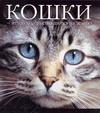 Федин С. Н. - Кошки - это духи, спустившиеся на землю' обложка книги