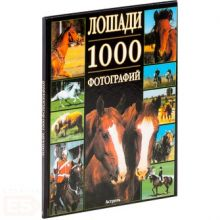 Леклер Бертран - Лошади обложка книги