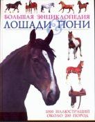Лошади & пони