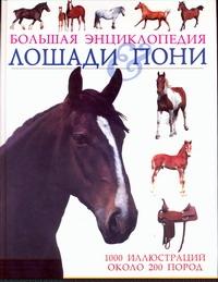 Лошади & пони Пикрел Т.