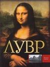 Сингаевский В.Н. - Лувр обложка книги