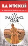 Медведев А. Н. - Н.А.Островский в изложении для школьников: Как закалялась сталь' обложка книги