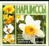 Волкова В.Н. - Нарциссы обложка книги