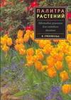 Палитра растений.Цветовые решения для садового дизайна