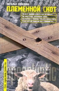 Племенной скот обложка книги