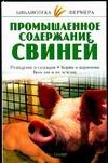 Промышленное содержание свиней