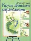 Афанасова В.В. - Рисуем цветными карандашами. Шаг за шагом обложка книги