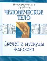 Венюкова В.Е. - Скелет и мускулы человека обложка книги