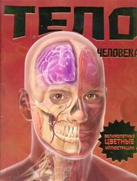 Калабрези Линда - Тело человека обложка книги