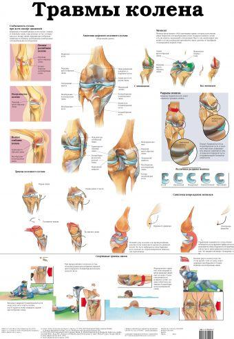 Травмы колена. Остеопороз Махиянова Е.Б.