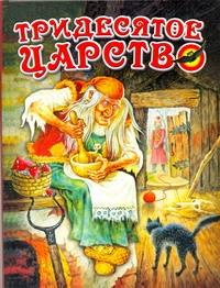 Данкова Р. Е. - Тридесятое царство обложка книги
