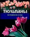 Тюльпаны Резько И.В.