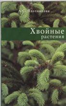 Плотникова Л. С. - Хвойные растения' обложка книги