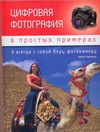Цифровая фотография в простых примерах ( Биржаков Никита Михайлович  )