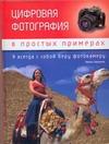 Биржаков Н. - Цифровая фотография в простых примерах обложка книги