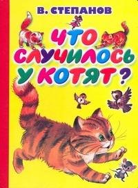 Степанов В.Д. - Что случилось у котят? обложка книги