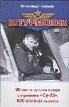 Кошкин А. - Штурмовик' обложка книги