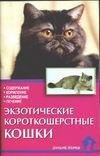 Экзотические короткошерстные кошки обложка книги