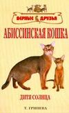 Абиссинская кошка Гринева Т И
