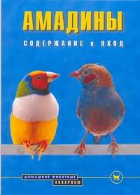 Голлманн Б. - Амадины обложка книги