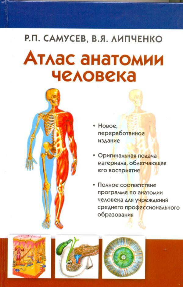 Атлас анатомии человека Липченко В.Я., Самусев Р.П.