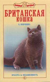 Шевченко Е.А. - Британская кошка обложка книги