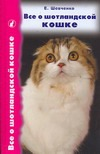 Все о шотландской кошке: скоттиш фолды, страйты и хайленд фолды