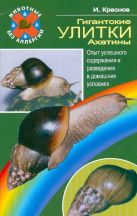 Гигантские улитки - ахатины