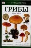 Лессо Т. - Грибы обложка книги