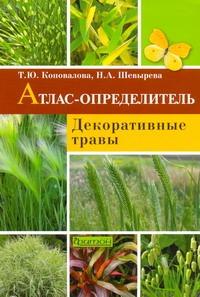Декоративные травы