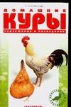 Рахманов А.И. - Домашние куры обложка книги
