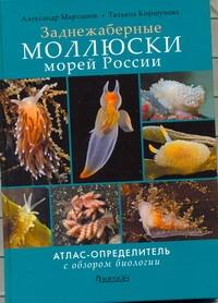 Коршунова Т.А., Мартынов А - Заднежаберные моллюски морей России обложка книги