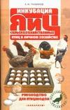 Рахманов А.И. - Инкубация яиц сельскохозяйственных птиц в личном хозяйстве обложка книги