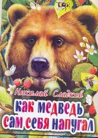 Как медведь сам себя напугал Сладков Н.И., Цыганков И.
