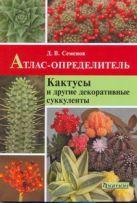 Кактусы и другие декор.суккуленты