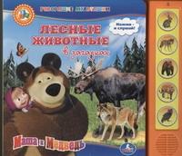 - Маша и Медведь. Лесные животные в загадках обложка книги
