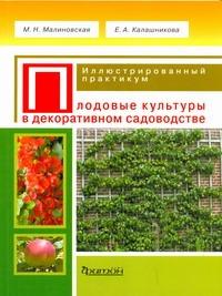 Малиновская М. Н. - Плодовые культуры в декоративном садоводстве обложка книги