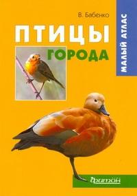 Бабенко В.Г. - Птицы города обложка книги