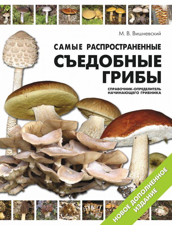 Самые распространенные съедобные грибы: справочник-определитель начинающего грибника Вишневский М.В.