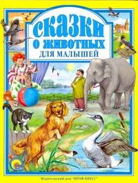 Сказки о животных для малышей Рашина Т.