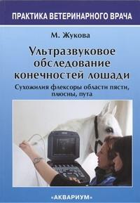 Жукова М.В. - Ультразвуковое Обследование конечностей лошади обложка книги