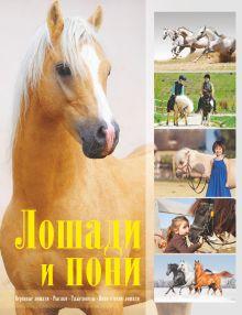 Жабцев В.М. - Лошади и пони обложка книги