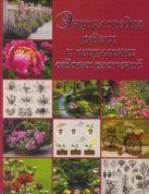 Энциклопедия редких и популярных садовых растений