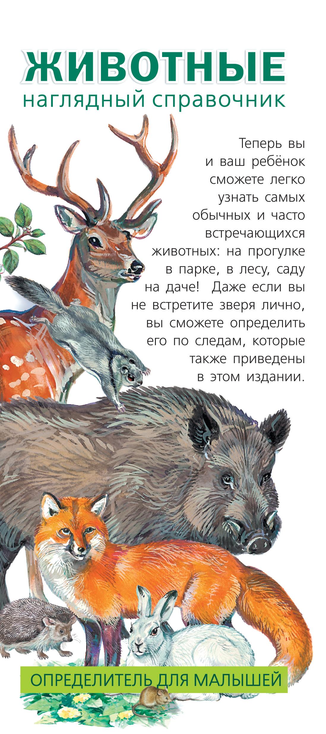 Животные. Определитель для малышей ( Шелкун Е.В.  )