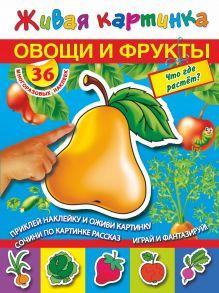 Дмитриева В., Горбунова И.В. - Овощи и фрукты: Овощи и фрукты: Что где растет? обложка книги