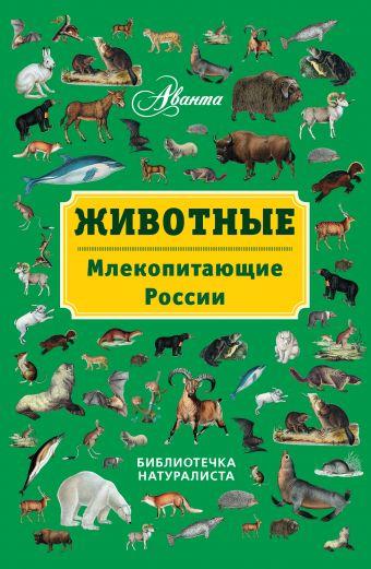 Животные: млекопитающие России Бабенко В.Г.