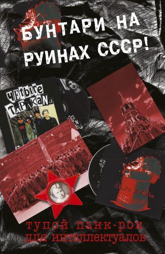 Тупой панк-рок для интеллектуалов Спирин Дмитрий
